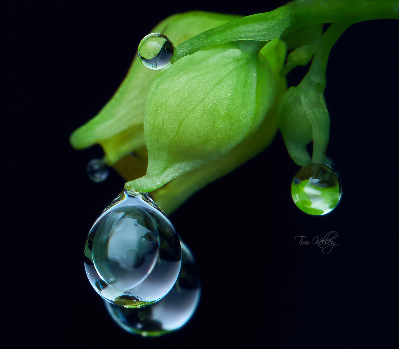 Wrestling with waterdrops